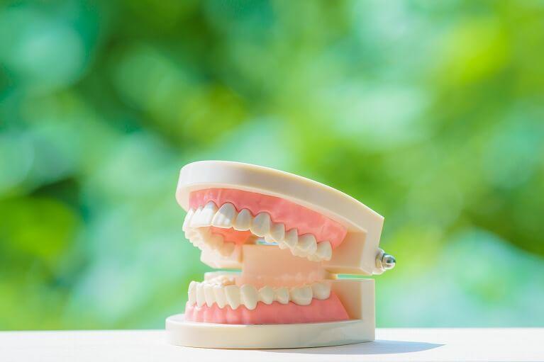 宝塚でおひとりお一人に合わせた丁寧な入れ歯作製をする安福歯科医院